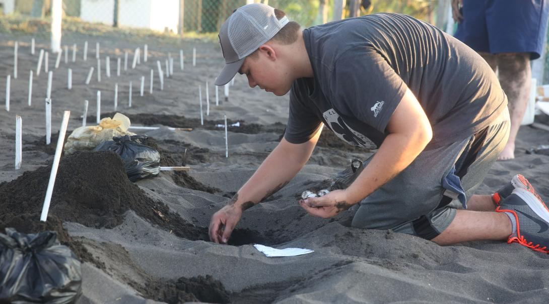 A Projects Abroad Conservation volunteer in Mexico cleans the remains of a recently hatched sea turtle nest.